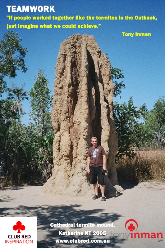 TEAMWORK-Cathedral-Termite-mound-NT-2005