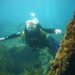 tony-diving