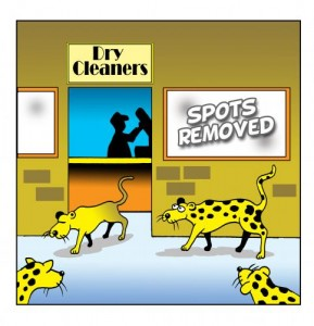 leopard_changes_its_spots